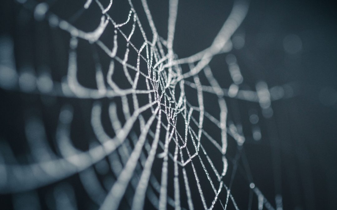 Untangling the Web of Dysfunction, the Set-Up